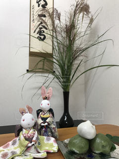ウサギさん達とお月見(๑>◡<๑)の写真・画像素材[1495737]
