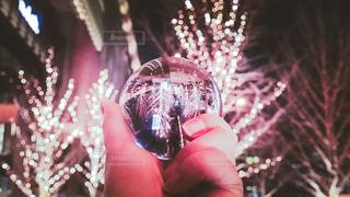 木,街,イルミネーション,Snapmart,明るい,街路樹,水晶,バブル,アンバサダー,グランフロント大阪,シャンパンゴールド,レンズボール