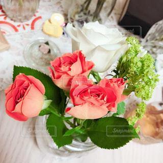 近くの花のアップの写真・画像素材[1542594]
