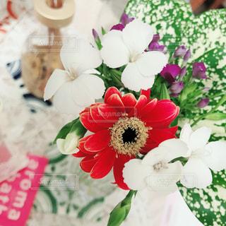 近くの花のアップの写真・画像素材[1542601]
