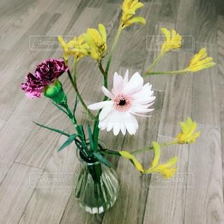 花の写真・画像素材[1571056]