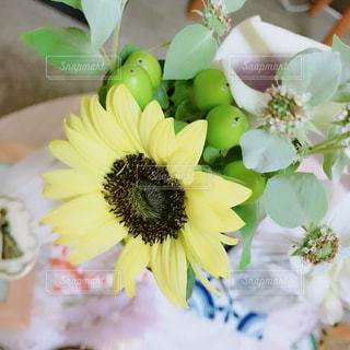 花の写真・画像素材[1571061]