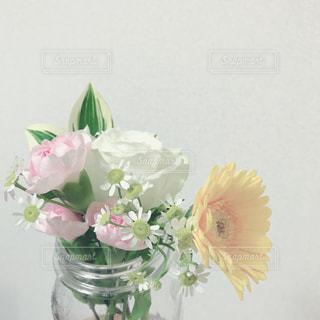 花の写真・画像素材[1571071]