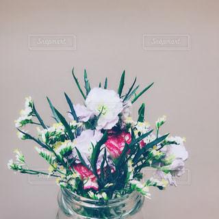 花の写真・画像素材[1571080]