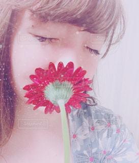 花の写真・画像素材[1571085]