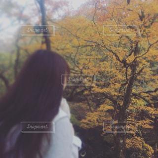 秋色コーデの写真・画像素材[1581822]