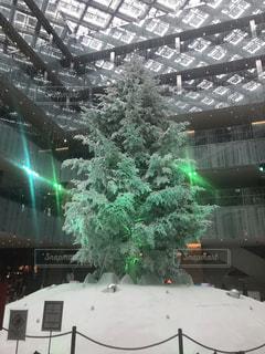 東京,クリスマスツリー,ホワイト,KITTE