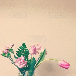 ベージュの写真・画像素材[2012881]