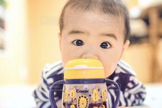 ラクマグデビュー!の写真・画像素材[2003374]