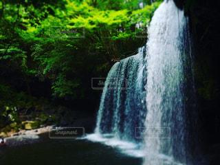滝 1の写真・画像素材[1498128]