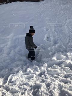 雪の写真・画像素材[1726708]