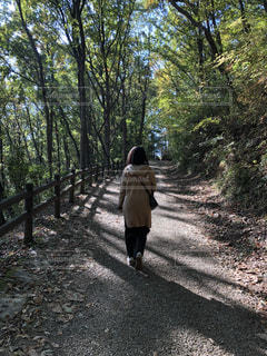 散歩道の写真・画像素材[2213430]