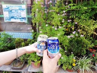 夏,京都,グラス,缶,ビール,乾杯,ドリンク,友達,缶ビール