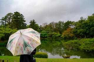 自然,風景,雨,傘,水,雫,小雨,雨の日,カラフルな傘