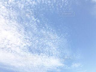 空,秋,青色,秋空