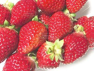 食べ物,赤,苺,フルーツ,果物,ベリー,おいしい,イチゴ