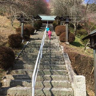 長ーい階段の写真・画像素材[2147010]