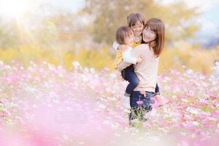 仲良くママの取り合いの写真・画像素材[1605858]
