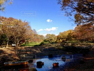 空,秋,ボート,青空,水辺,景色,木々,秋空,航空公園