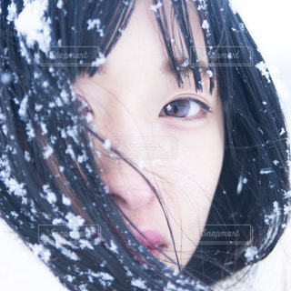 冬のポートレートの写真・画像素材[1607269]