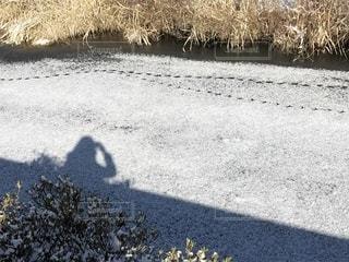 雪に足あとの写真・画像素材[1739852]