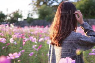 綺麗な髪、サラサラな髪の写真・画像素材[1598327]