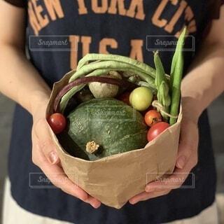 野菜の写真・画像素材[3661073]