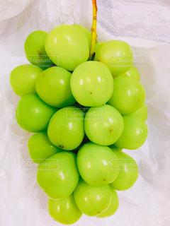 フルーツ,甘い,贅沢,シャインマスカット,ぶどう,食欲の秋