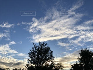 空,秋,雲,秋空