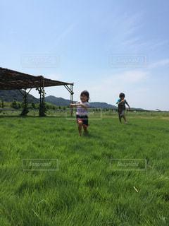 緑豊かな緑のフィールドを駆け回る兄妹の写真・画像素材[1507417]
