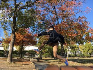 公園,紅葉,ジャンプ,未来,男の子,夢,前向き