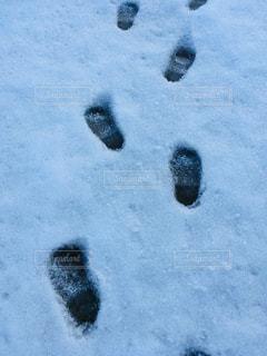 小さい足の写真・画像素材[1759876]