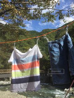 屋外,キャンプ,洗濯,秋空
