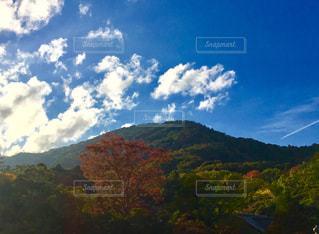 風景,空,秋,紅葉,雲,青空,伊勢神宮,秋空
