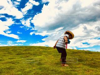 空,秋,草原,雲