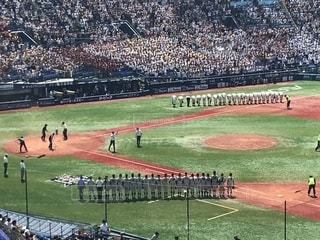 夏,スポーツ,屋外,高校生,野球,スタジアム,横浜スタジアム,高校野球,観客,応援,グランド,高校球児,スポーツの秋