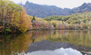 鏡池の紅葉の写真・画像素材[1608810]