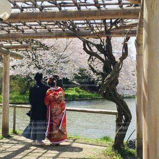 幸せそうな新婚カップル❣️の写真・画像素材[1609417]