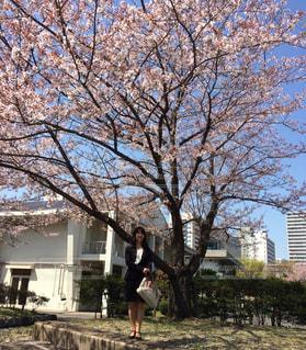 入社式後に近所の桜の下での写真・画像素材[1644853]