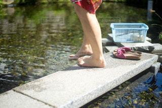 水浴びの写真・画像素材[1832670]