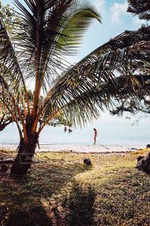 海辺に佇む人の写真・画像素材[2096100]