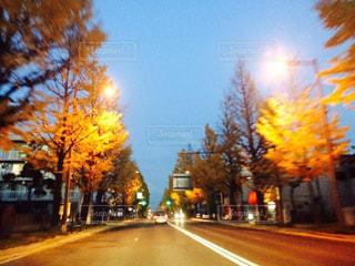 空,道路,樹木,道,通り