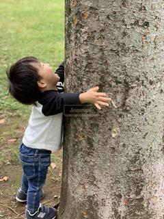 子ども,公園,木,草,人物,人,大きな木
