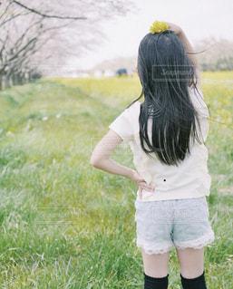 女性,風景,晴れ,後ろ姿,菜の花,撮影,子供,女の子,樹木,小さい,ポーズ,女の人,桜の木,インスタ映え,お出かけスポット,髪の長い