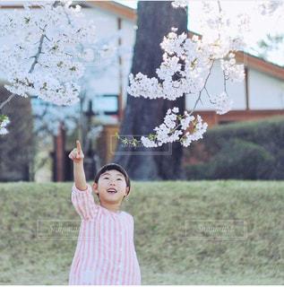 子ども,風景,花,春,桜,手,女の子,少女,指,人物,人,笑顔,幼児,見つけた,指先,指差し,さくら,人差し指,ゆびさし