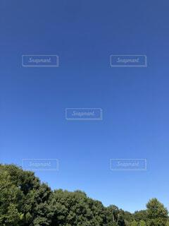 空の写真・画像素材[4906261]