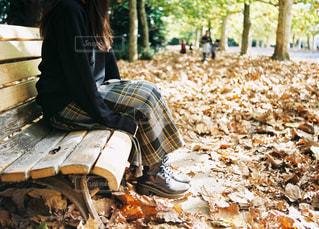 ベンチに座っている人の写真・画像素材[1631349]