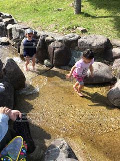 夏をさきどりの写真・画像素材[2147466]