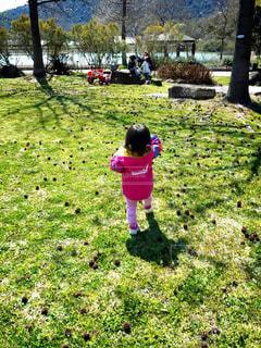 公園,後ろ姿,女の子,人物,背中,人,後姿,赤ちゃん,グリーン,休日