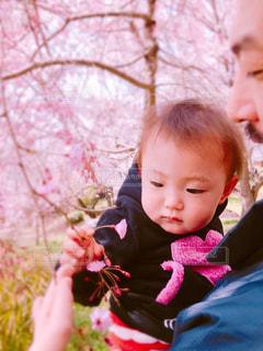 花,桜,幼児,パパ,父,ありがとう,お父さん,父の日,感謝,だっこ,6月16日,ファザーズデイ